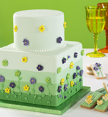 Sottocorta and cakeboards