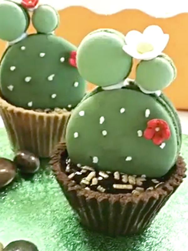Cactus Macaron